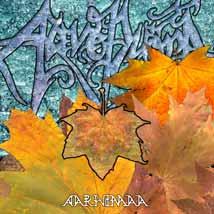 Aarnimaa - front sleeve